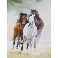 demo-horses